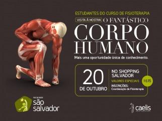 Visita à mostra O Fantástico Corpo Humano